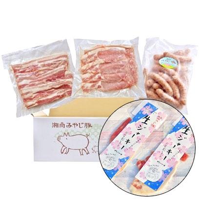 [湘南みやじ豚]BBQセット+生ジャーキー 精肉