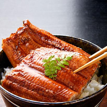 鹿児島県産うなぎ蒲焼セット 干物・漬魚・うなぎ・魚卵