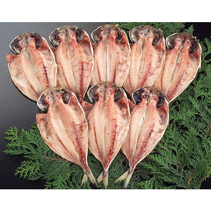 [加倉のひもの]真アジ干物 8枚入 干物・漬魚・うなぎ・魚卵