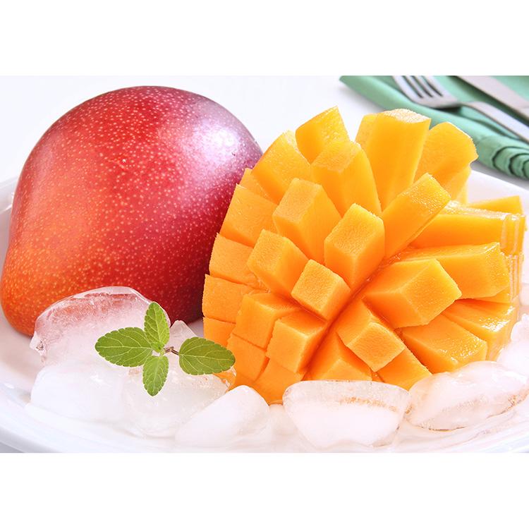 【完熟マンゴー】宮崎県産「太陽のたまご」2L3玉詰め フルーツ