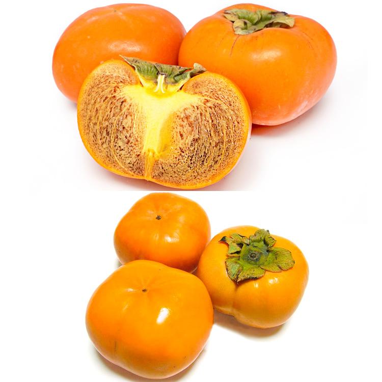 和歌山県産紀ノ川柿(3個)&愛知県産次郎柿(3個) 食べ比べセット