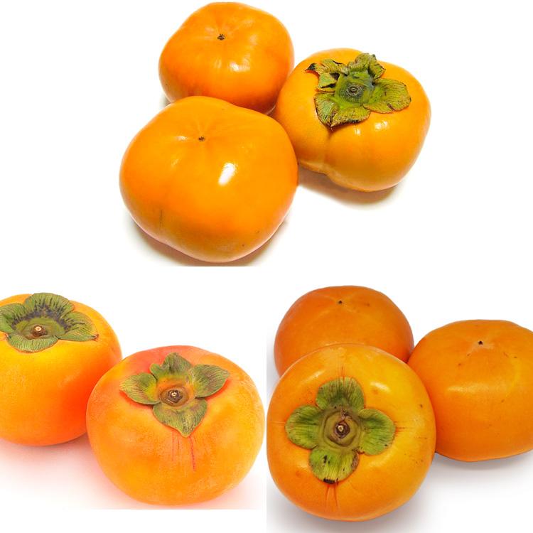 【食べ比べ】柿三昧(次郎&太秋&早生富有)各2個づつ 食べ比べセット