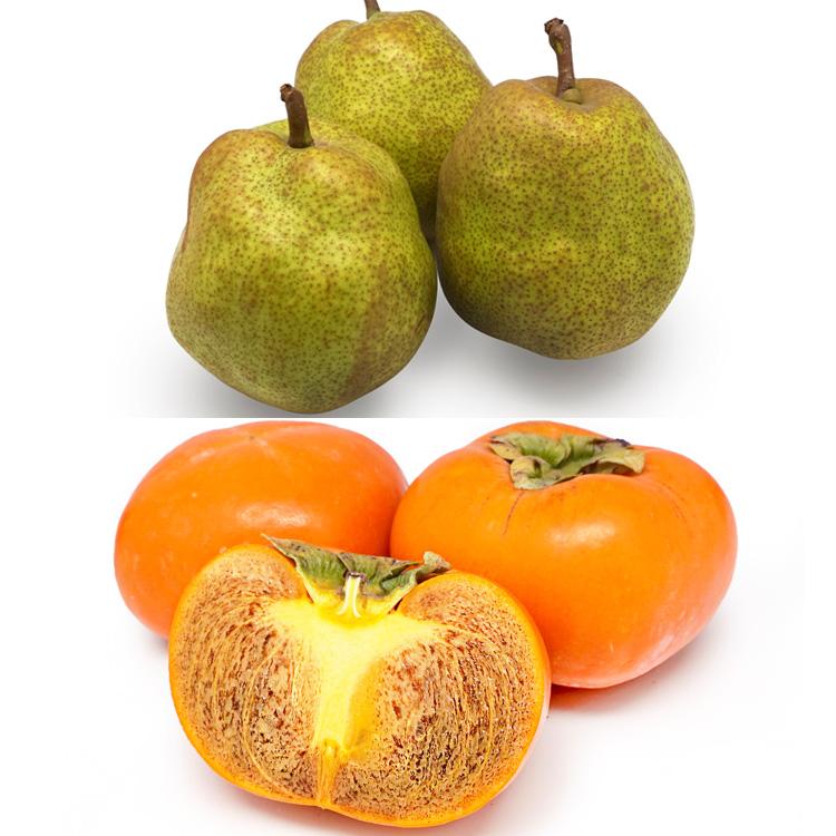 【食べ比べ】ラフランス(3個)&紀ノ川柿(3個) 柿&洋ナシセット
