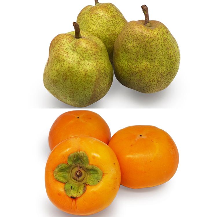 【食べ比べ】ラフランス(3個)&早生富有柿(3個) 柿&洋ナシセット