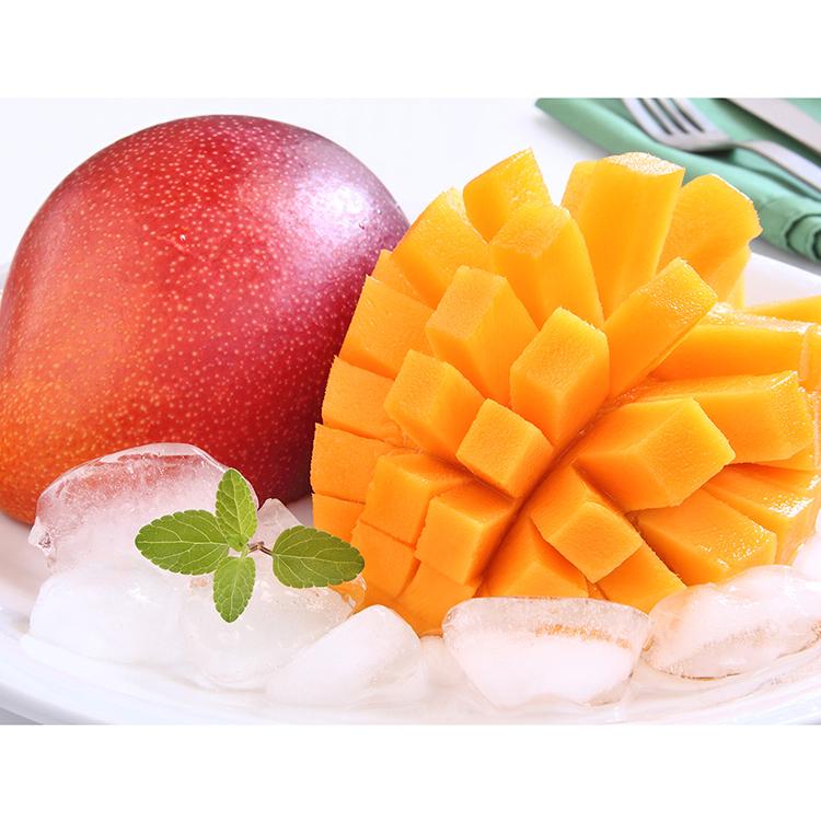 宮崎県産完熟マンゴー「太陽のタマゴ」2Lサイズ マンゴー