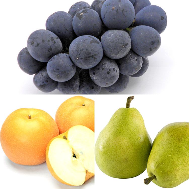 種なしピオーネ&和洋梨食べ比べセット ぶどう
